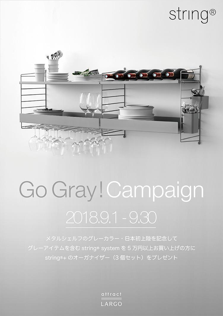 string Go Gray! Campaign(ストリング グレーキャンペーン)